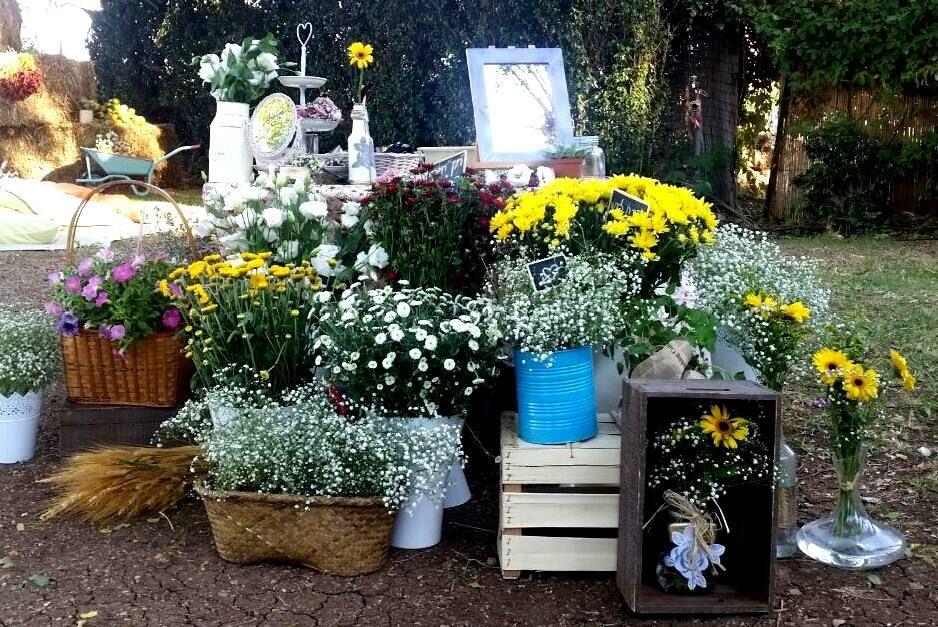 פרחים ועוד עמדת שזירה דרור שדה אחינעם לוי בורנשטיין קיבוץ טירת צבי חנות בגדים ועיצוב הבית