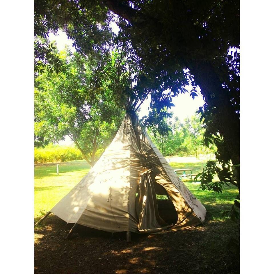 אוהל קמפינג בלוג בורנשטיין דרור שדה אחינעם לוי בית הלל שטח טבע